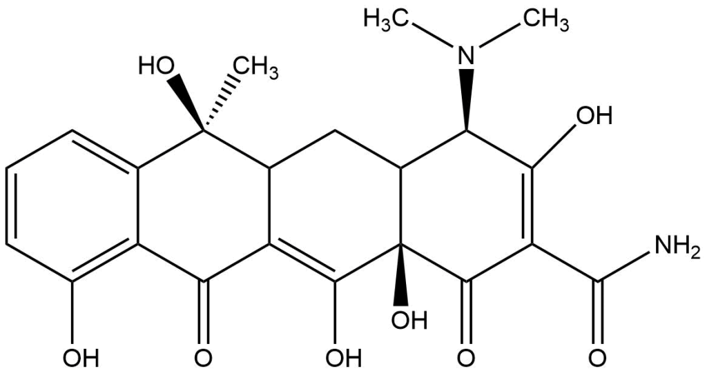 The structure of tetracycline is drawn out.